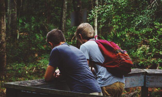 Dostluk, arkadaşlık (II)